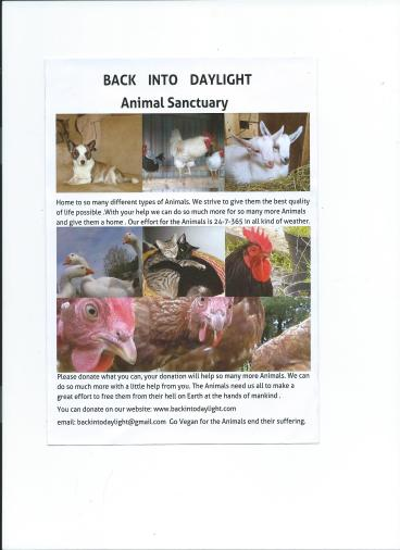 Our new flyer to Raise money for the Sanctuary