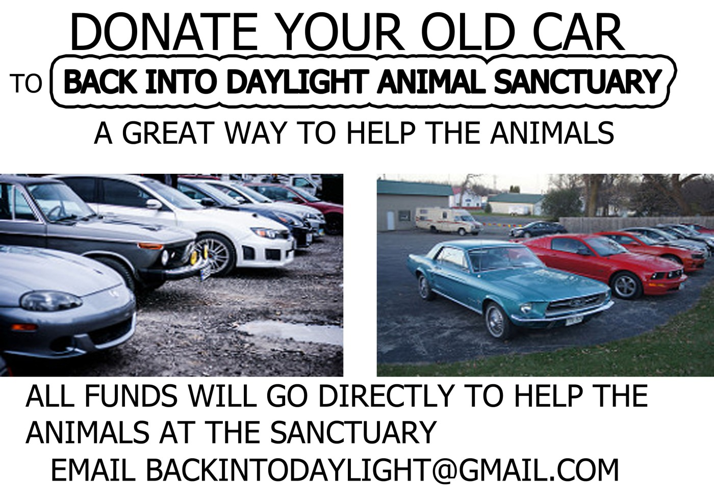 Donate Your Old Car Or Van To The Sanctuary Back Into Daylight