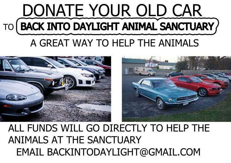 Cars sanctuary