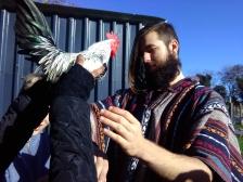 dublin-vegfest-volunteers-016