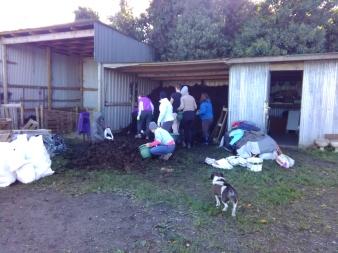 dublin-vegfest-volunteers-028