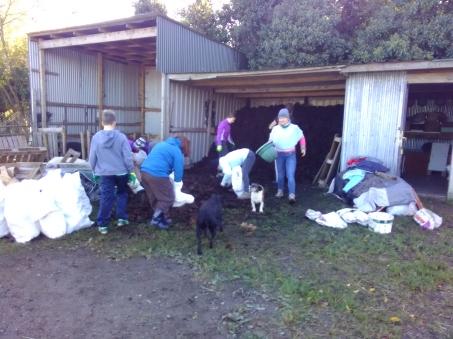 dublin-vegfest-volunteers-031